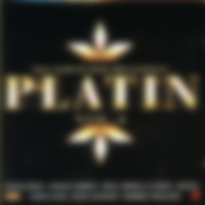 Platin (Vol. 4) - Das Album der Megasongs 0731455568723