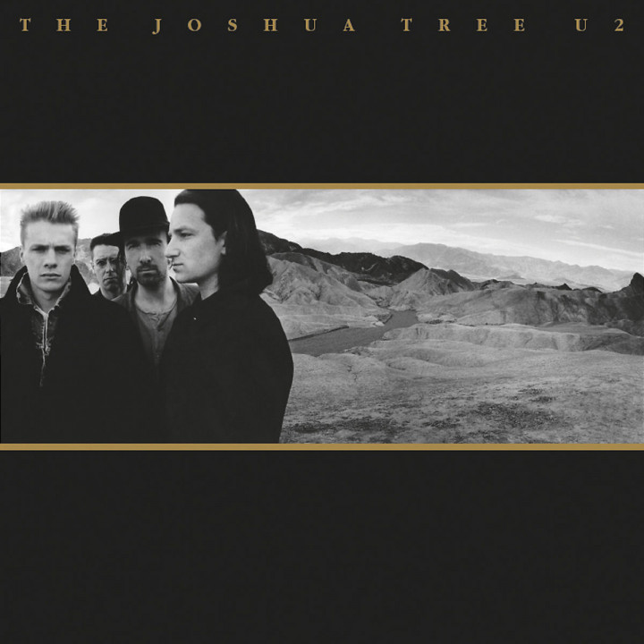 The Joshua Tree 0042284229823