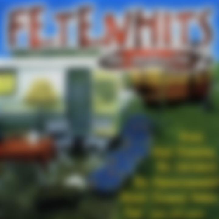 Fetenhits - Die Deutsche Vol.2 0731456428228