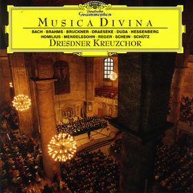 Max Reger, Musica Divina, 00028945348421