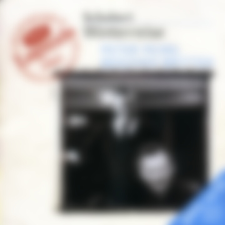 Schubert: Winterreise 0028946638224