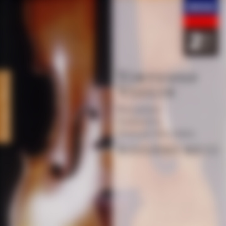 Virtuoso Violin: Ruggiero Ricci 0028945819125