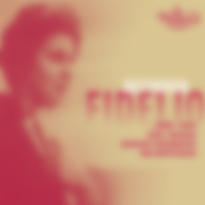 Fidelio 0028947120427
