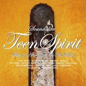 Beautiful Teen Spirit The Heartbreakingly 89