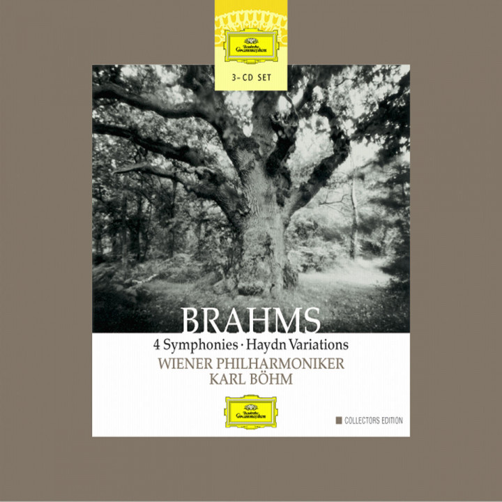 Brahm: 4 Symphonies; HaydnVariations 0028947144324