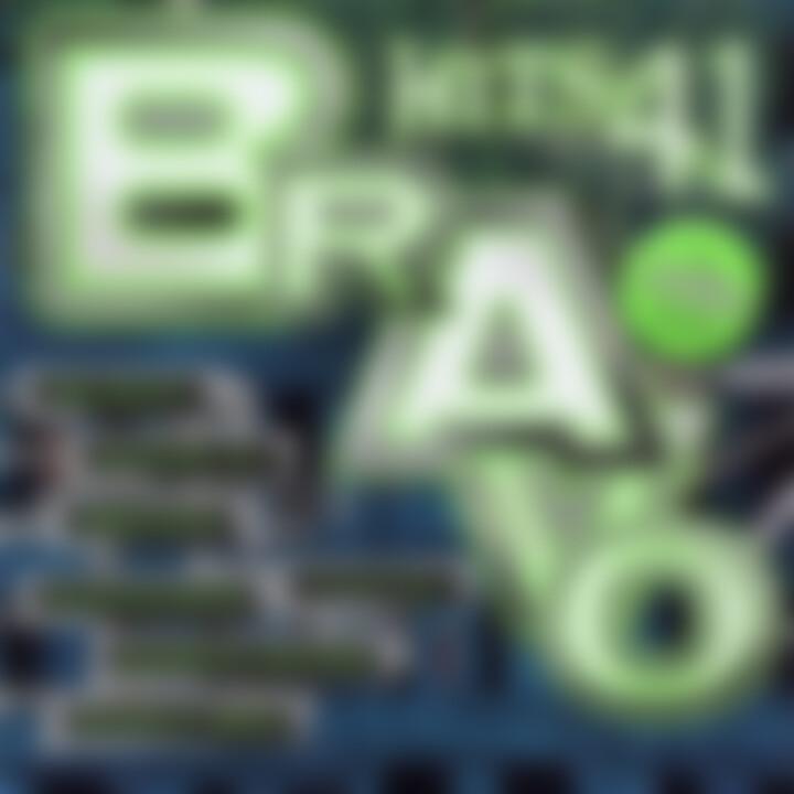 Bravo Hits (Vol. 41) 0602498010523