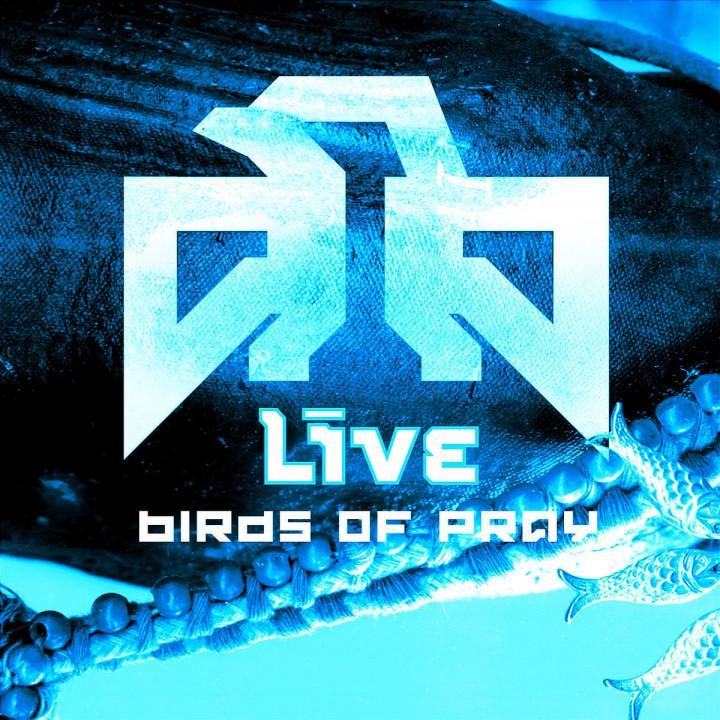 Birds Of Pray 0008811324124