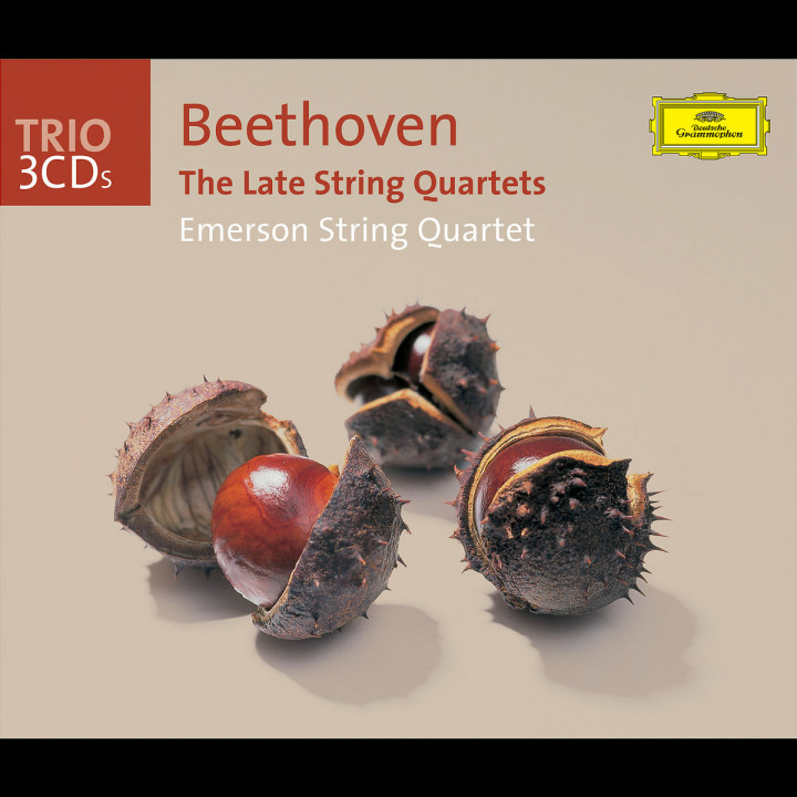 Beethoven: The Late String Quartets 0028947434128