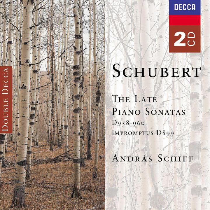 Schubert: The Late Piano Sonatas 0028947518426