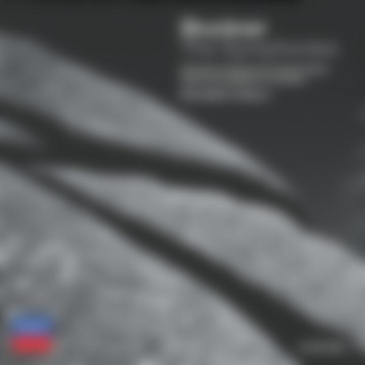 Bruckner: The Symphonies 0028947533128