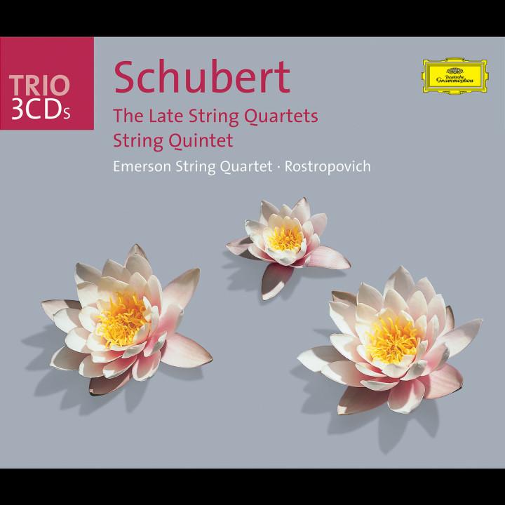 Schubert: The Late Quartets; Quintet 0028947704524