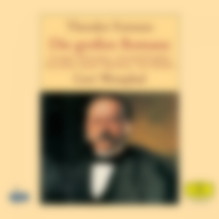 Fontane: Die großen Romane 2 0028947620190