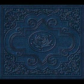 Ryan Adams, Cold Roses, 00602498818275