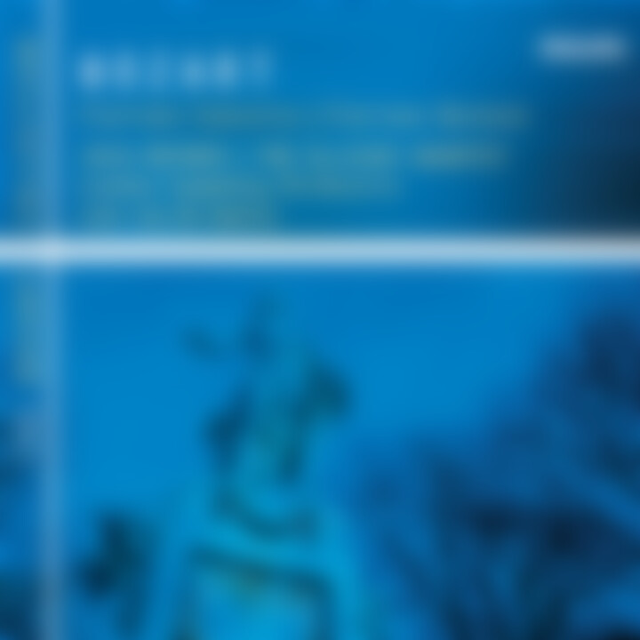 Mozart: Clarinet Concerto; Clarinet Quintet 0028947570529