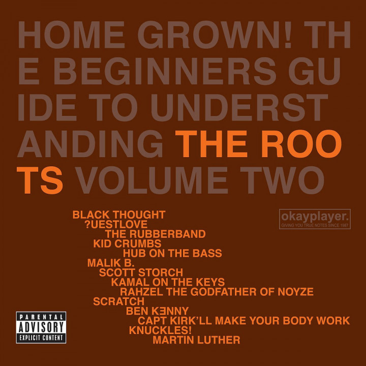 Home Grown! The Beginner's Guide To Understanding The Roots Volume 2 0602498869363