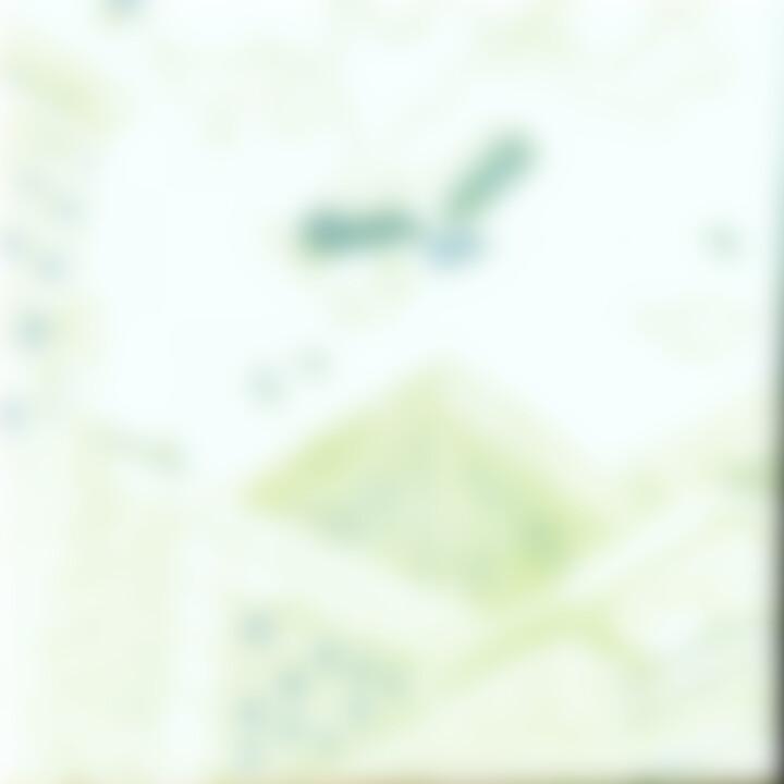 Houyoku 4027792000045