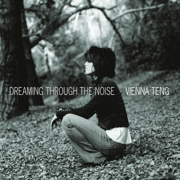 Dreaming Through The Noise 0602517126949