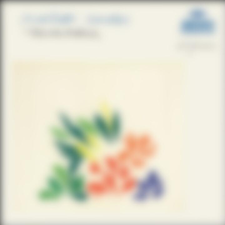 Scarlatti: Sonatas 0028947767363