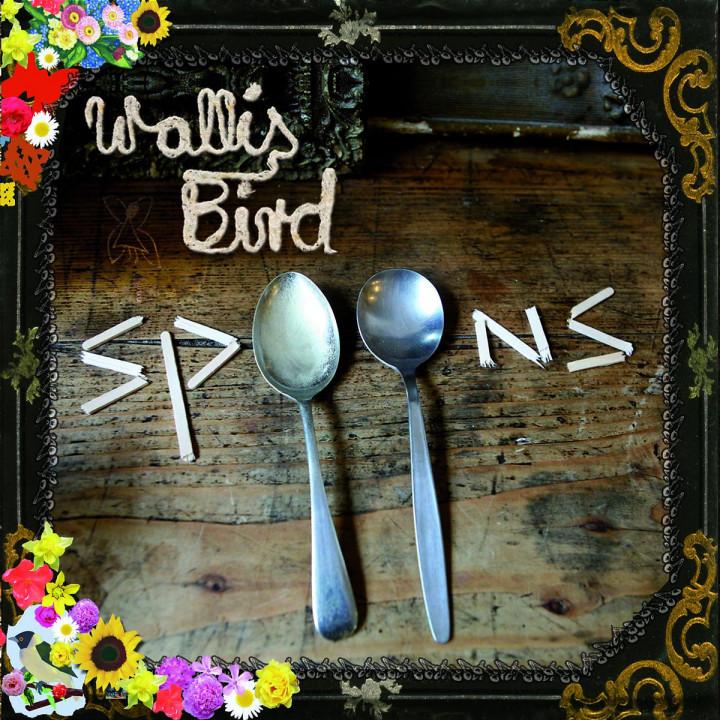 Spoons 0602517476280