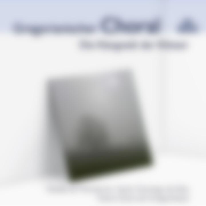 Gregorianischer Choral - Die Klangwelt der Klöster 0028948002805