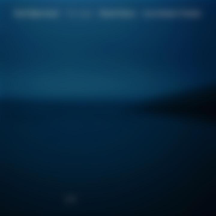 The Light 0602517579778