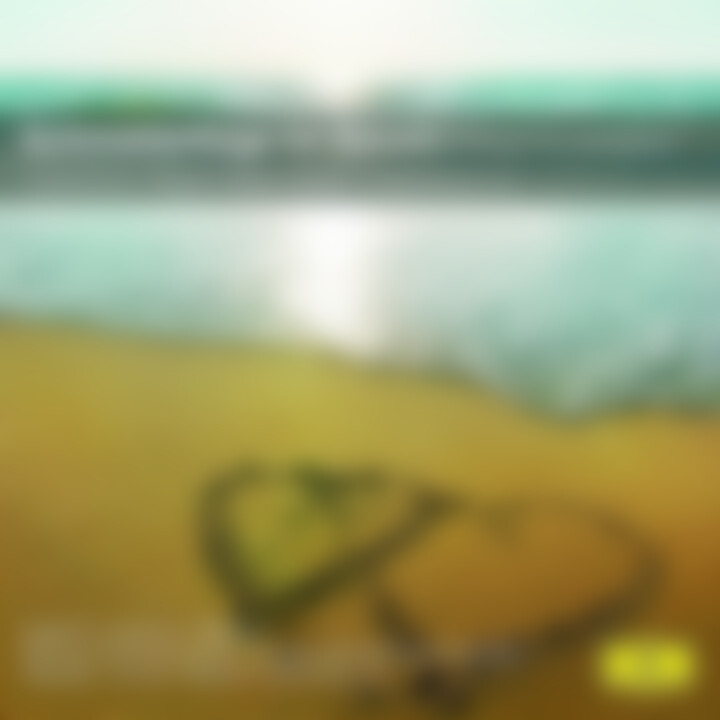 Schmetterlinge im Bauch - Musik für Verliebte 0028948012668