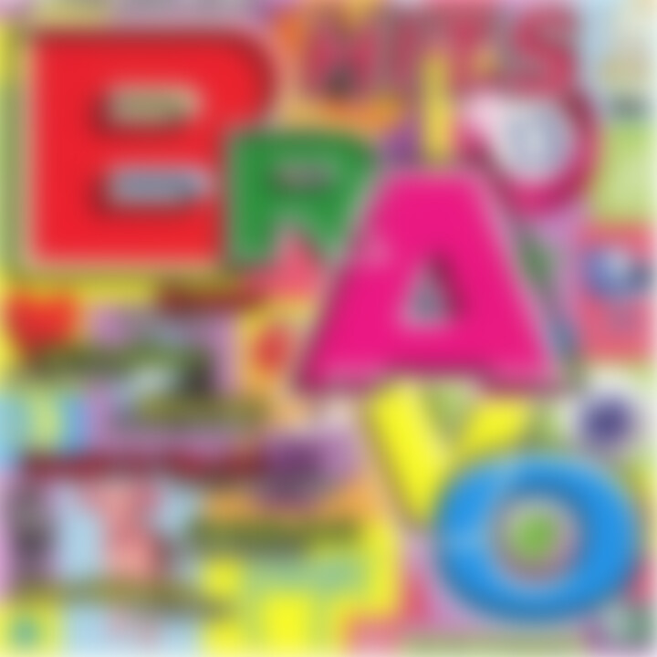 BRAVO Hits 13