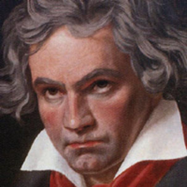 Ludwig van Beethoven, Beethovens Schädel