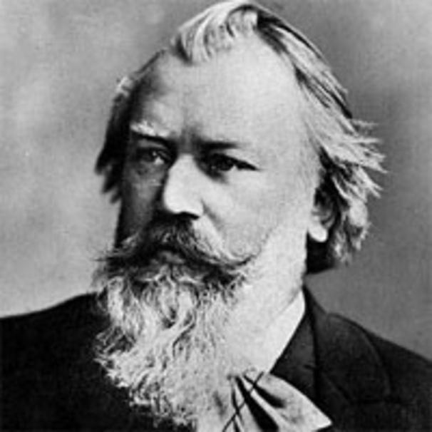 Johannes Brahms, Lieben sie Brahms?