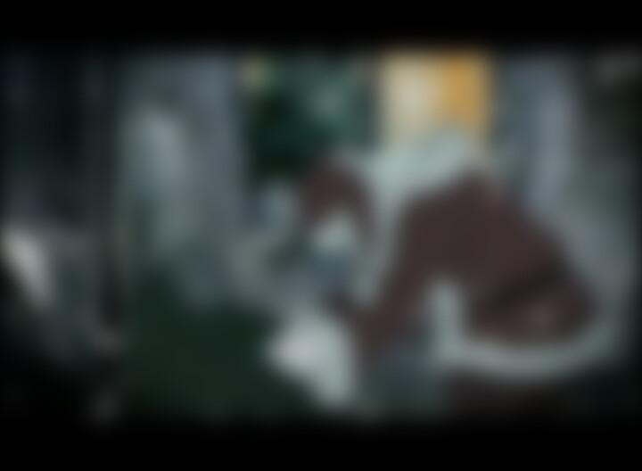 Diakonie Trailer