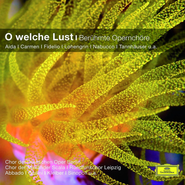 O welche Lust -  Berühmte Opernchöre 0028948018277