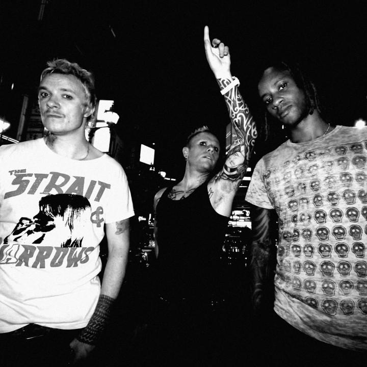 prodigy PM 2008