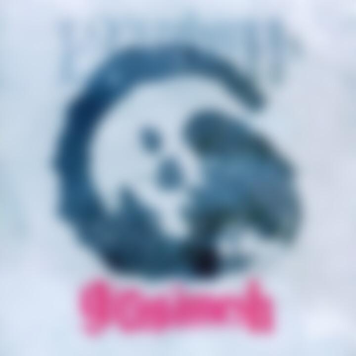 Girugämesh - 13th Reborn Cover