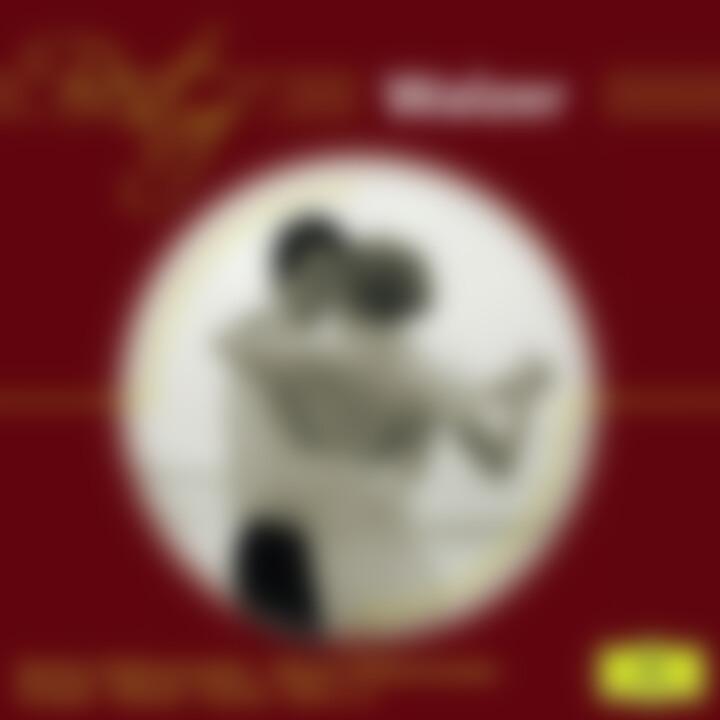 Best of Walzer: Karajan/Chailly/Maazel/BP/WP/CGO/+