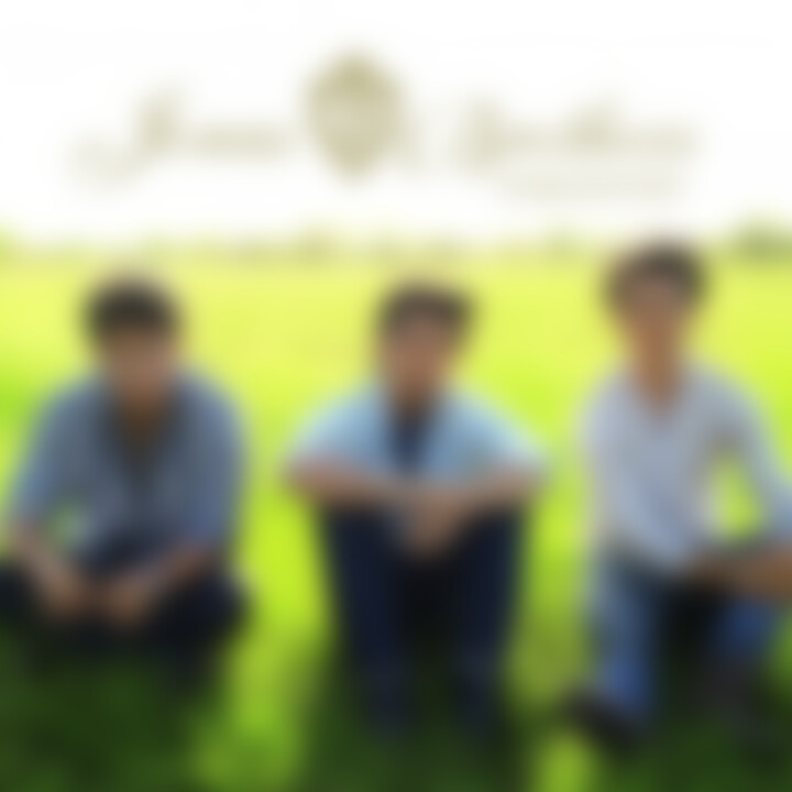 jonas brothers single cover 05/2009