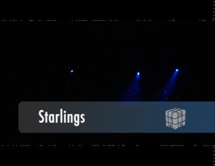 Starlings_Live in Berlin 28.05.09
