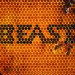 Beast, Beast, 00602527153063