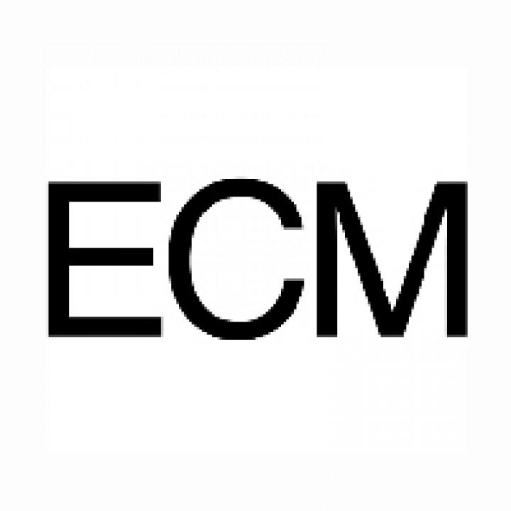 Logo ECM S/W