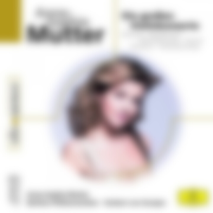 Anne-Sophie Mutter - Die großen Violinkonzerte: Mutter,Anne-Sophie/Karajan/BP