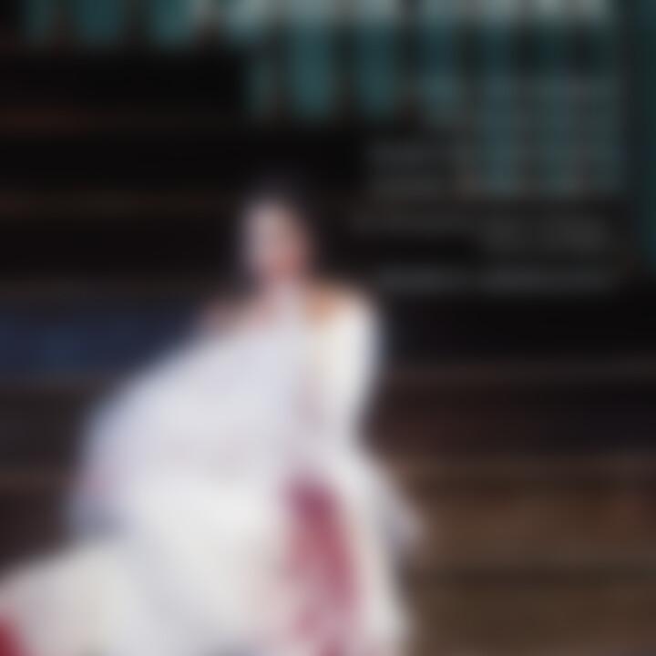 DONIZETTI: Lucia di Lammermoor: Netrebko,Anna/MET/Armiliato,Marco