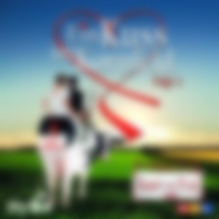 Ein Kuss Im Kornfeld Vol. 2 ¿ Die schönsten Hits aus Bauer sucht Frau