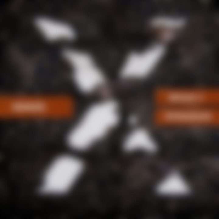 Humus: Bojan Z & Tetraband