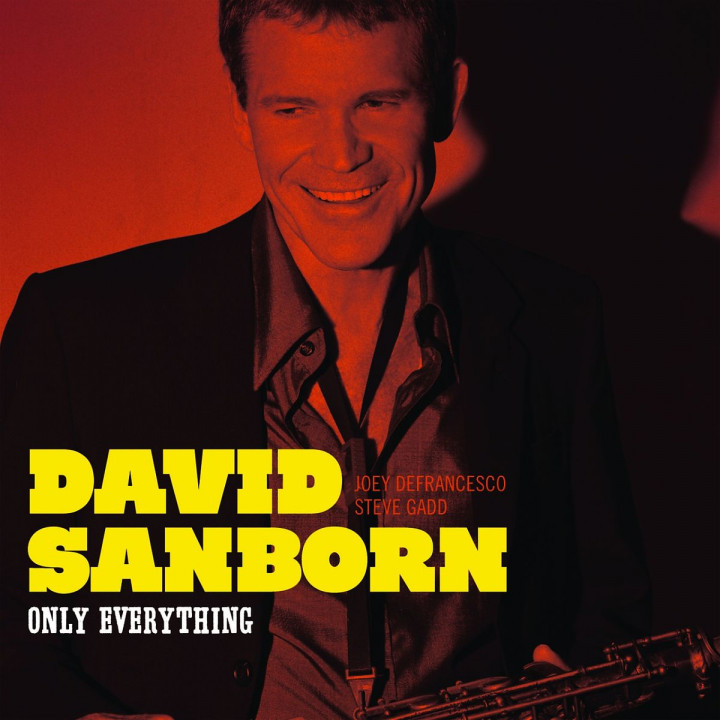 Only Everything: Sanborn,David