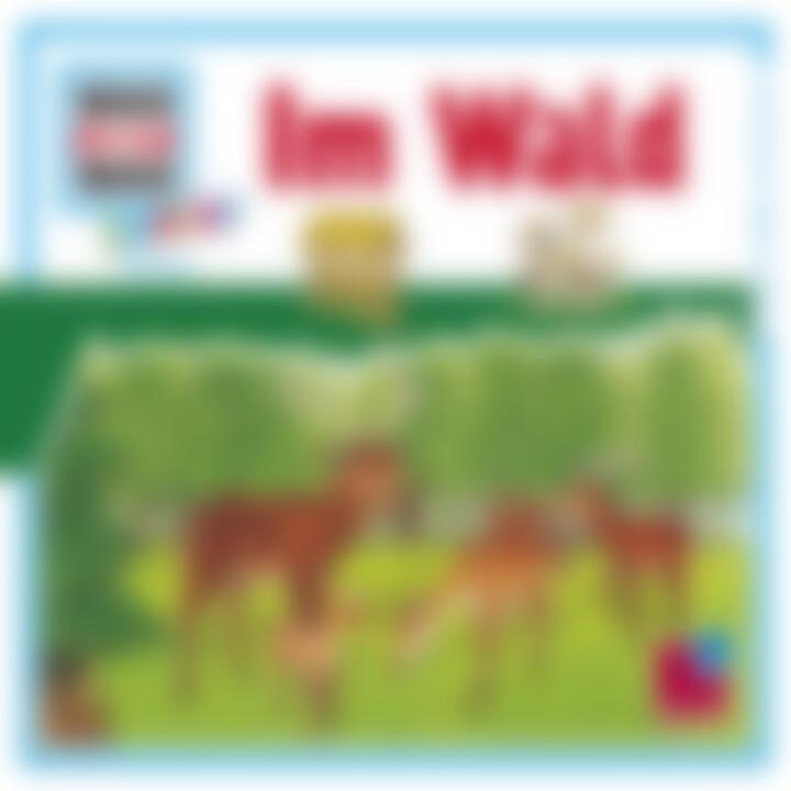 Folge 11: Im Wald: Was Ist Was Junior