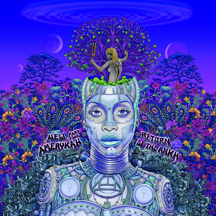 Erykah Badu Album cover 2010