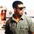 Drake Bild 01 2010