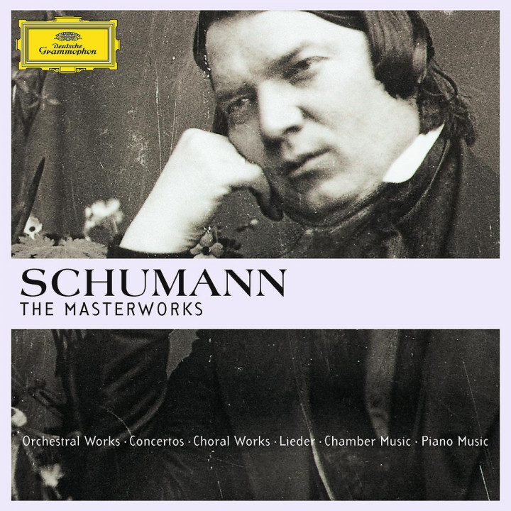 Schumann - The Masterworks (Ltd. Edit.): Various Artists