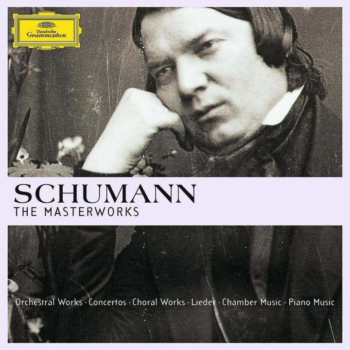 Schumann - The Masterworks (Ltd. Edit.): Various Artists