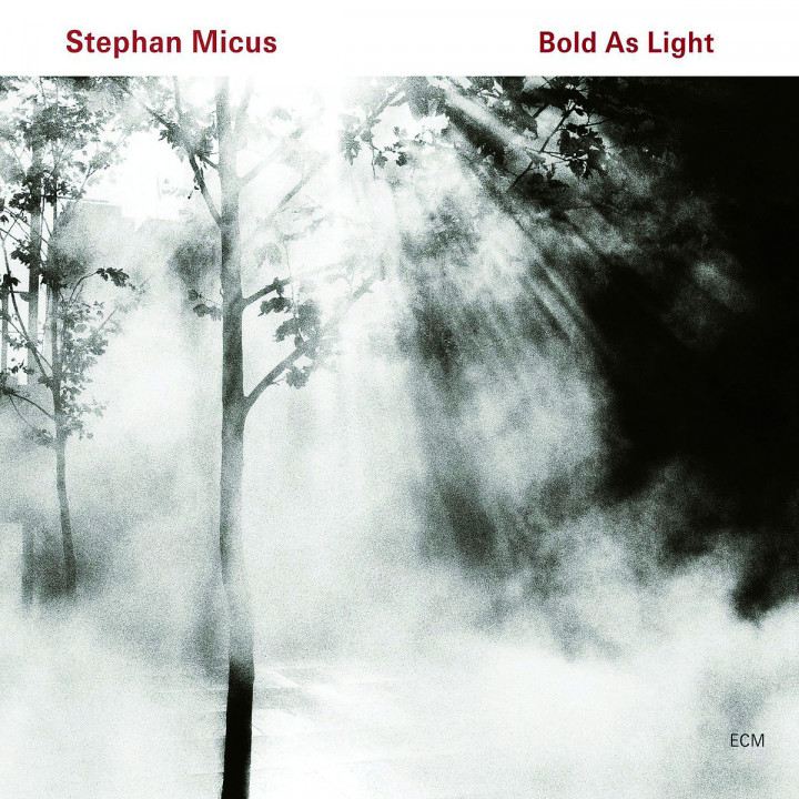 Bold As Light: Micus,Stephan