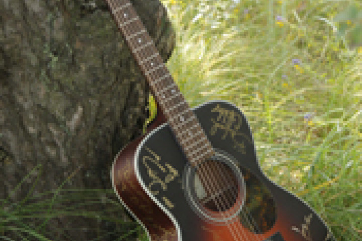 Gute Laune TV - Gitarren Versteigerung